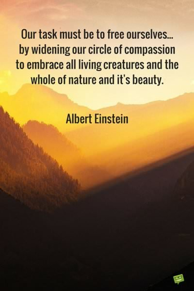 Albert Einstein's Most Inspiring Quotes