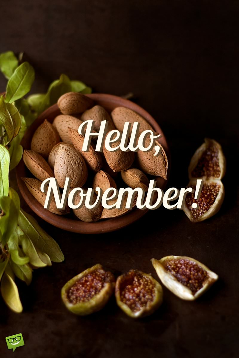 Hello November Quotes For The Month Of Gratitude