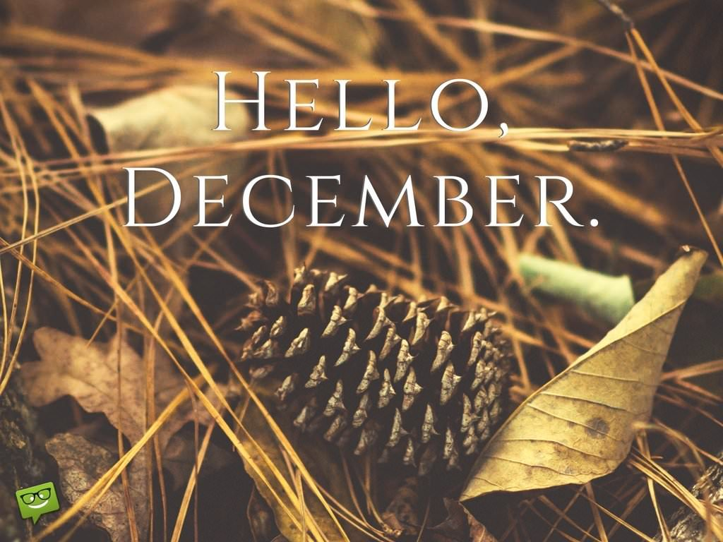 Hello December! End The Year And Start Anew