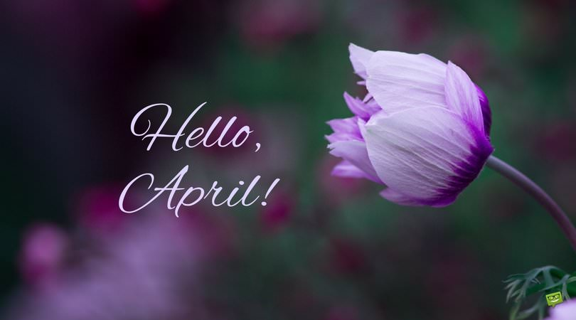 Edgar Allan Poe Quotes Wallpaper Hello April In April Fools Day Pranks We Trust