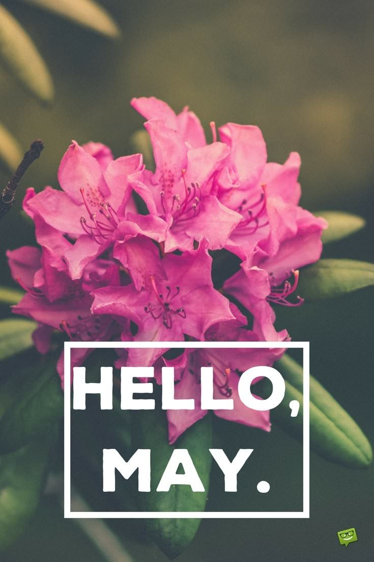 Hello May Quotes About Spring In Bloom Part 2