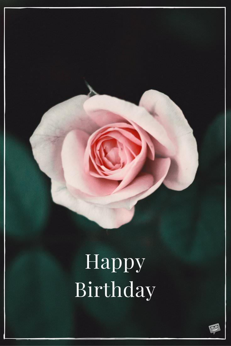 Fl Wishes Ecards Free Birthday Images With Flowers