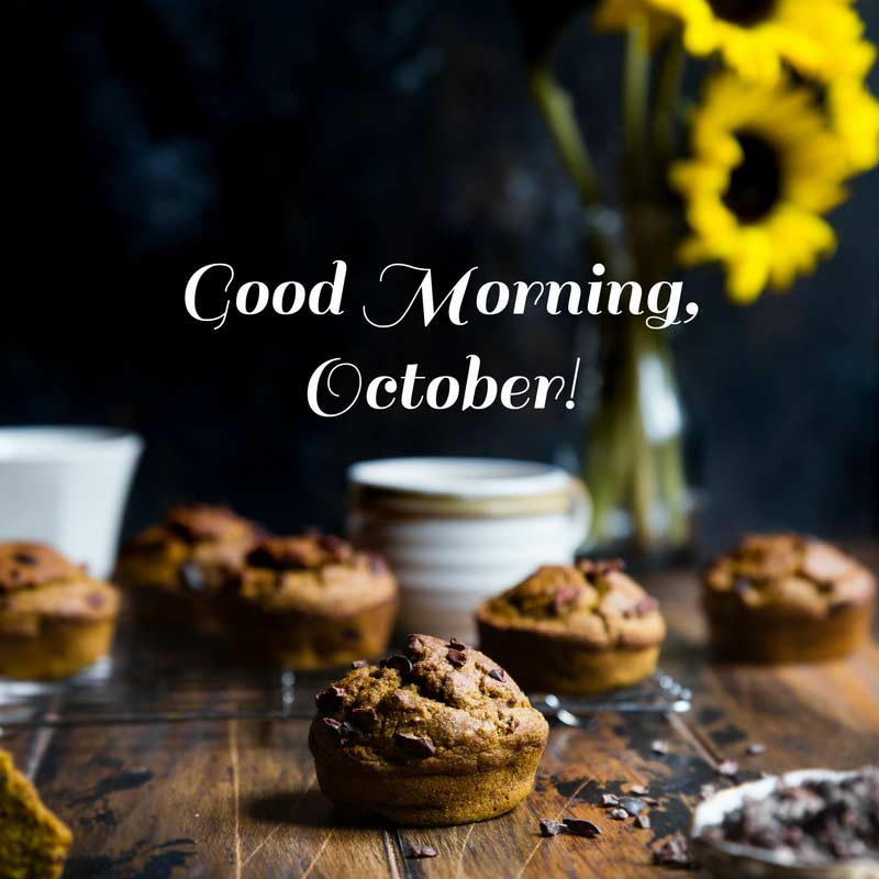 Morning Tuesday Fall Good Images