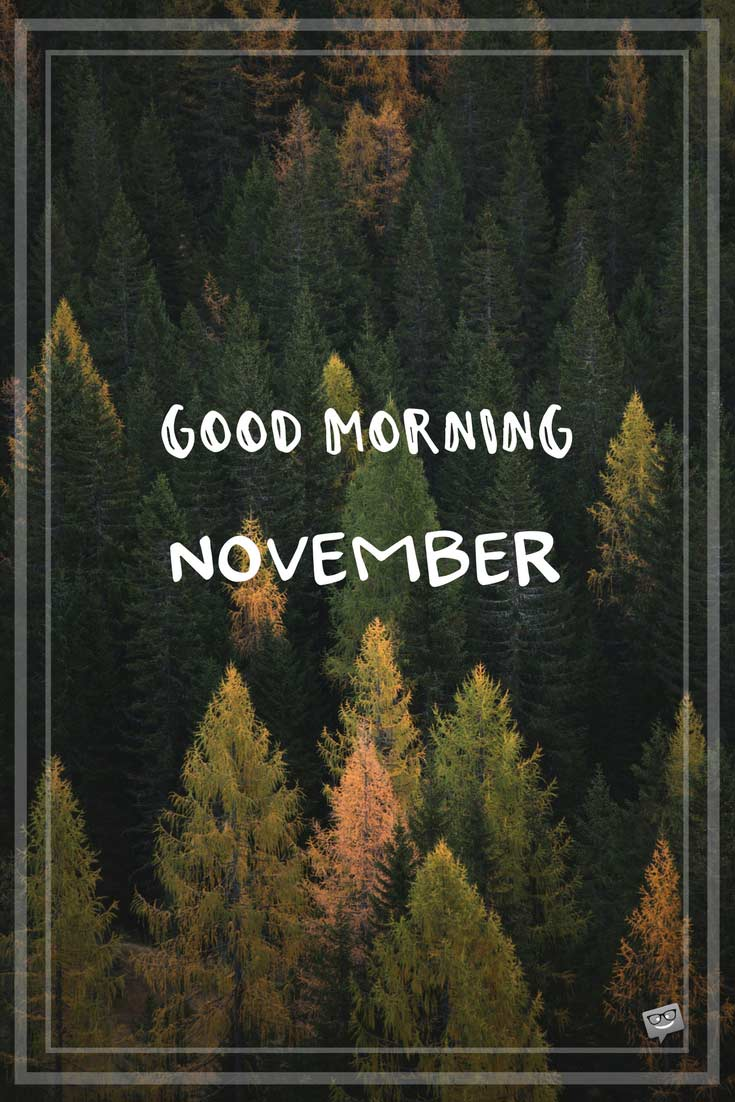 Good Morning Hello November