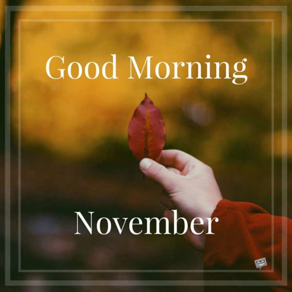 Good Morning Hello November!