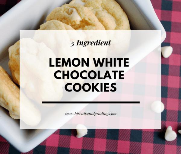 5 Ingredient Lemon White Chocolate Cookies