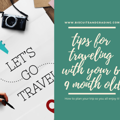 Tips for Traveling with Your 6-9 Month Old