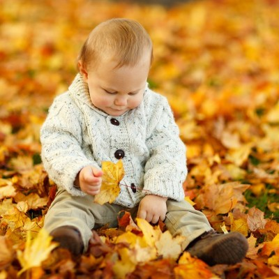 Fall Toddler Bucket List (FREE PRINTABLE)