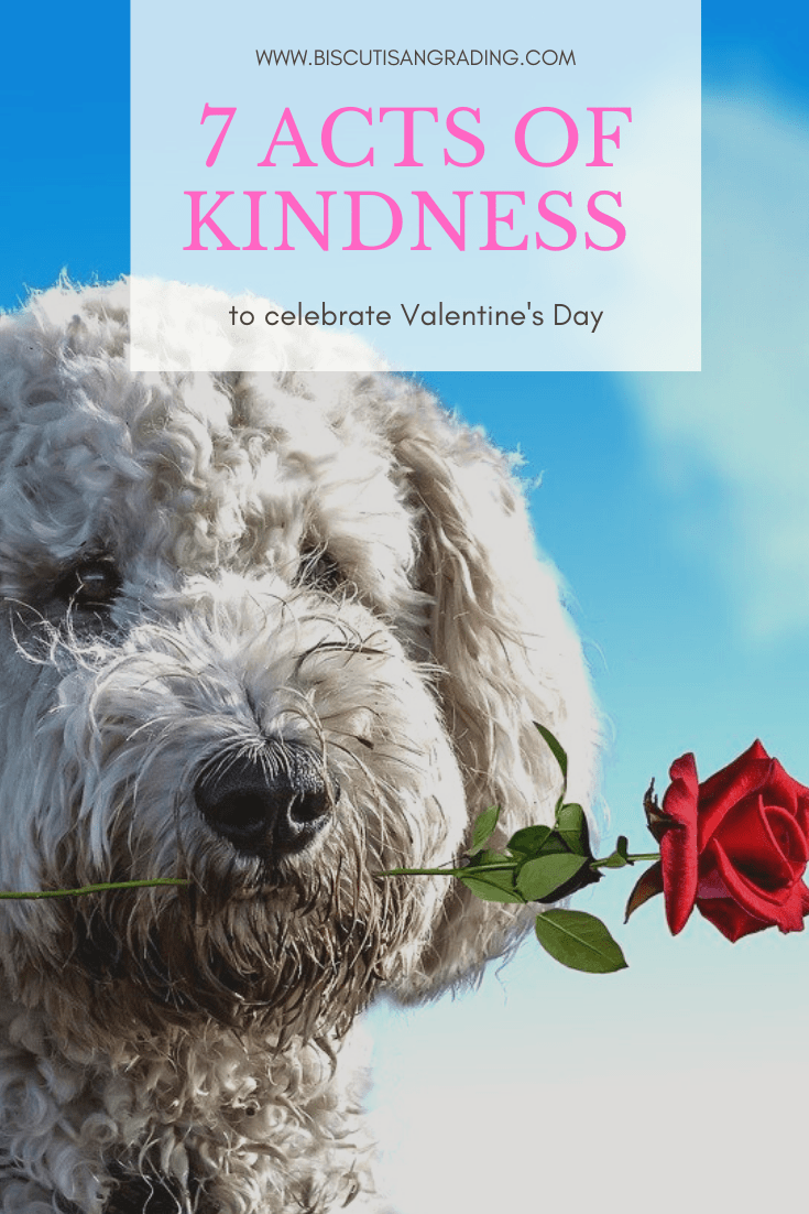 7 Acts of Kindness t o celebrate Valentine's Day