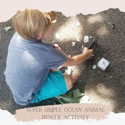 Super Simple Ocean Animal Rescue Activity