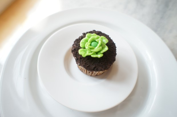 finished lettuce cupcake