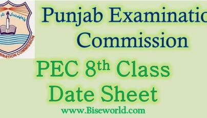 Grade 8th Class Model Papers 2019 Punjab Examination