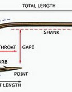 Guide to the parts of  hook also information on fishing hooks types and sizes rh bishfish