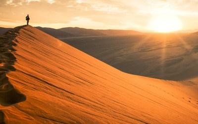 The Desert Journey