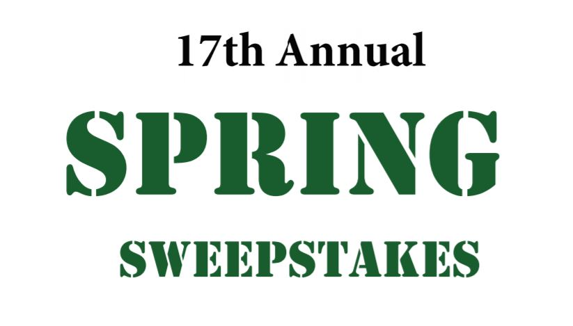 Spring Sweepstakes St. Patrick's Day Winners!