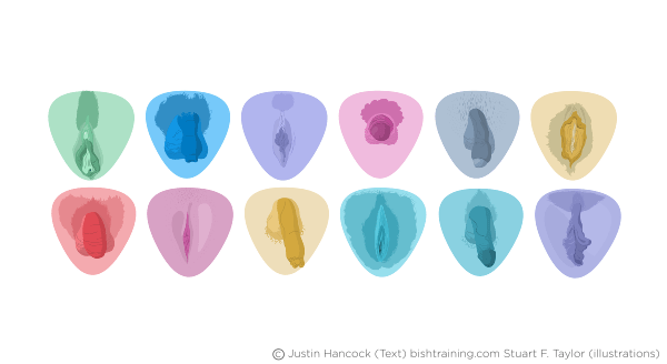Drawings of Genitals. Picture of normal vagina. Picture of normal penis.