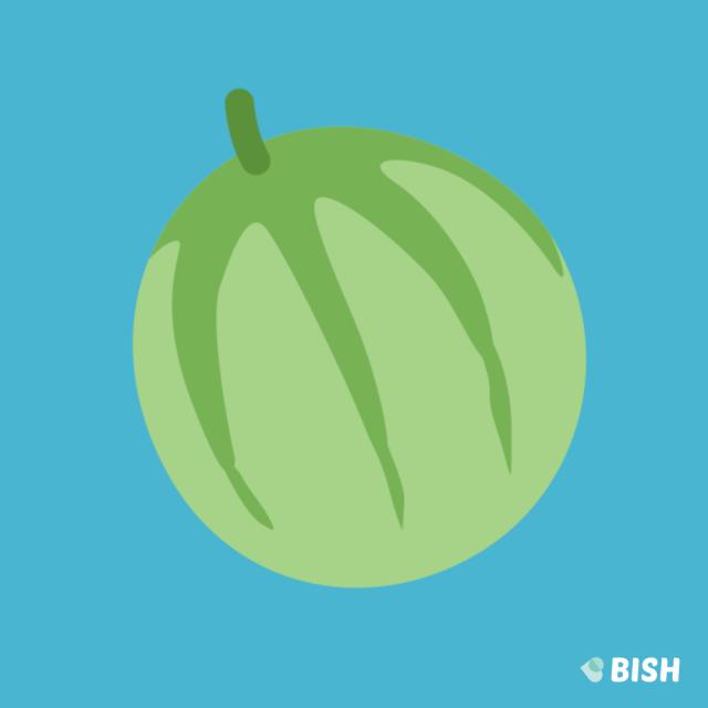 nice ripe juicy melon