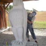 Erstellung eines Adlers