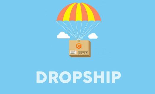 Apa Itu Bisnis Dropship dan Bagaimana Cara Kerja dan ...