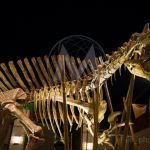 Jurassic World museo