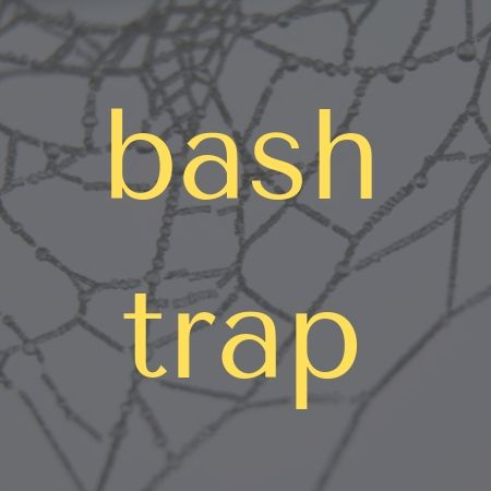 Bash Trap Command
