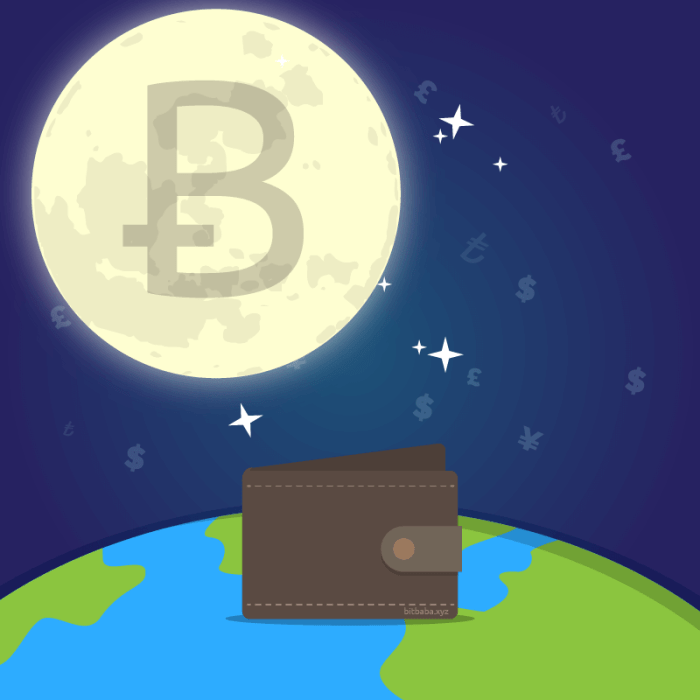 bitbaba bitcoin moon world and wallet