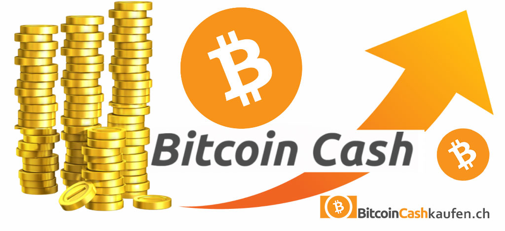 bitcoin-cash-prognose