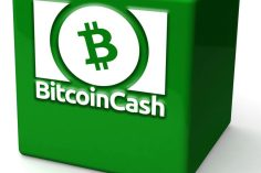 Bitcoin Cash Stress Test Goes Beyond 24-Hours Setting New Records 11