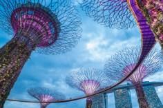Major Korean Crypto Exchange Upbit Opens in Singapore Next Month 7
