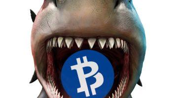 Hacker Livestreams 51% Attack on Bitcoin Private 2