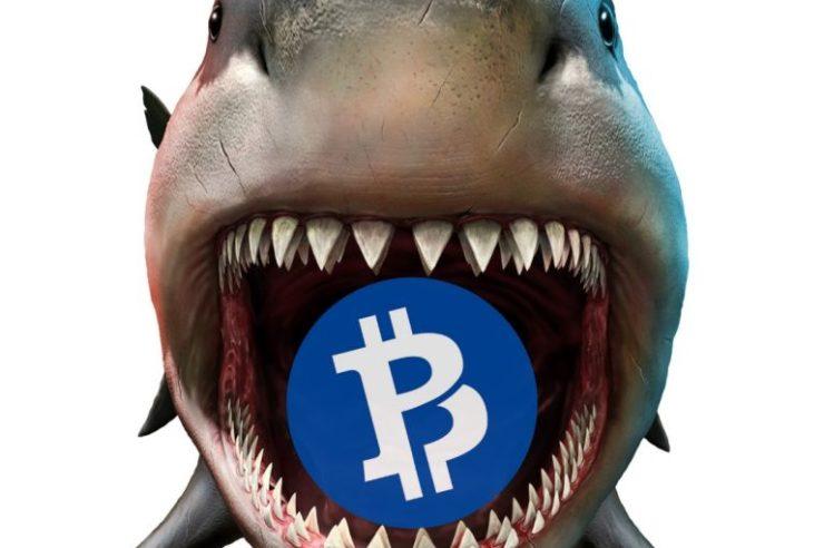 Hacker Livestreams 51% Attack on Bitcoin Private 1