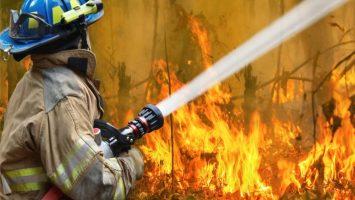 Binance Donates $1 Million in Crypto for Australian Bushfire Relief 2