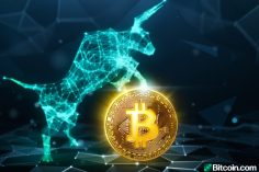 Market Update: Bulls Return, 120 Million Tethers Minted, Bitcoin Halving Looms 11