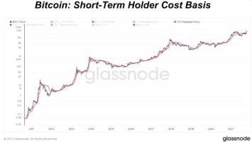 bitcoin short term holder cost basis