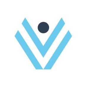 ViValid logo