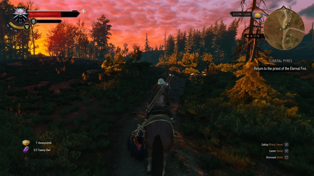 witcher pic 4
