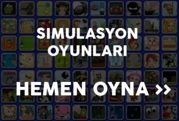 Simulasyon Oyunları