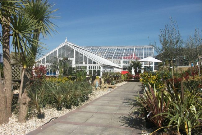 Kids Craft Parties at The Palm House, Weymouth