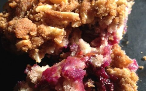 Red, White, and Blueberry Bramble: a crumbly, delicious, multi-colored treat for 4th of July! - The Bitty-Bits Blog