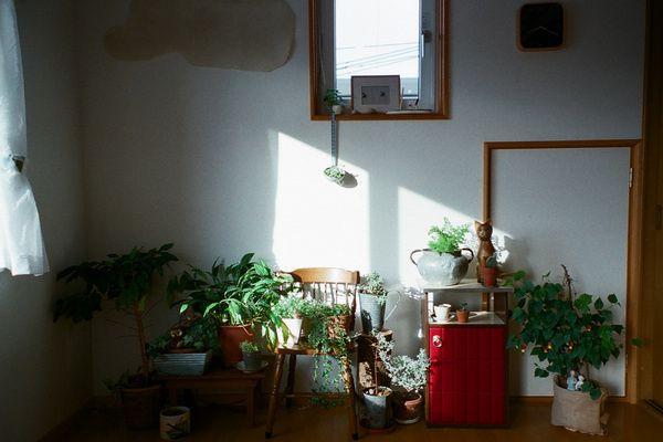 kitchen pots and pans window valance ideas 日本小清新住宅 sayaka的日系简约家居(组图) - 家居装修知识网