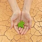 Penyebab & Cara Mengobati Tangan Kering & Pecah-pecah