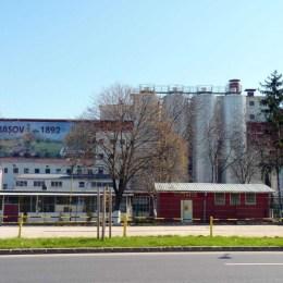 Berarii japonezi de la Ursus fac angajări în fabrica de la Brașov
