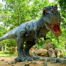 Bilanţ la doi ani de la deschiderea Dino Park: 700.000 de vizitatori şi o cifră de afaceri de peste 18 milioane de lei