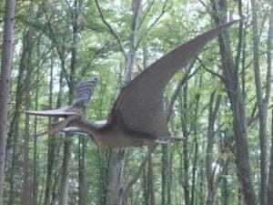 dinozauri zburator (3)