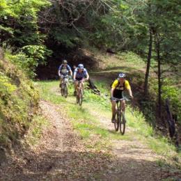 11 trasee pentru biciclişti au fost amenajate în Parcul Naţional Piatra Craiului