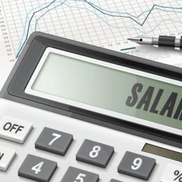 A devenit literă de lege: de la 1 ianuarie, salariul minim brut crește la 2.080 lei, iar minimul pentru intelectuali ajunge la 2.350 lei