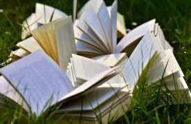 Brașovenii de la Libris.ro au vândut peste 8 milioane de cărți în cei nouă ani de existență