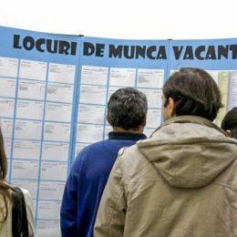 Ce locuri de muncă sunt disponibile peste hotare prin rețeaua Eures. Oferte în special pentru Spania și Germania
