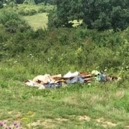 Amendă de 100 de lei pentru un făgărășan care a aruncat gunoiul la marginea drumului