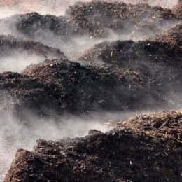 O firmă germană care fertilizează pământul cu dejecții de pasăre, indicată ca fiind sursa mirosului groaznic din oraș. Nemții au în arendă peste o mie de hectare în jurul Brașovului